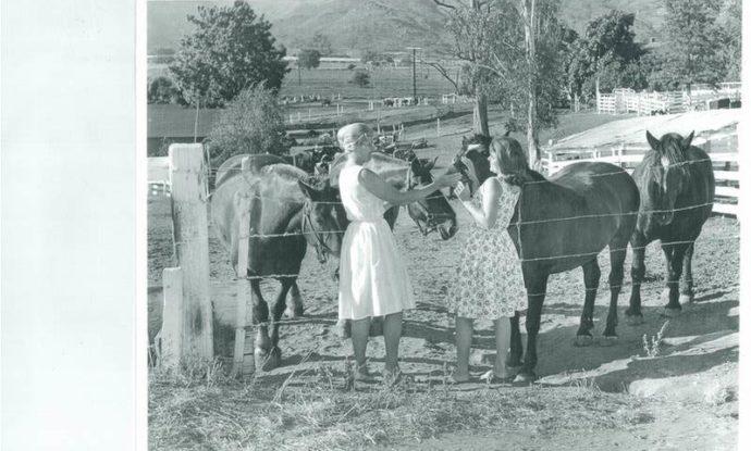 You-and-Mom-feeding-draft-horses-1-e1529513103443-690x415